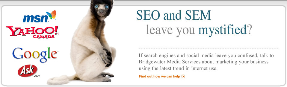 SEO and SEM leave you mystified?